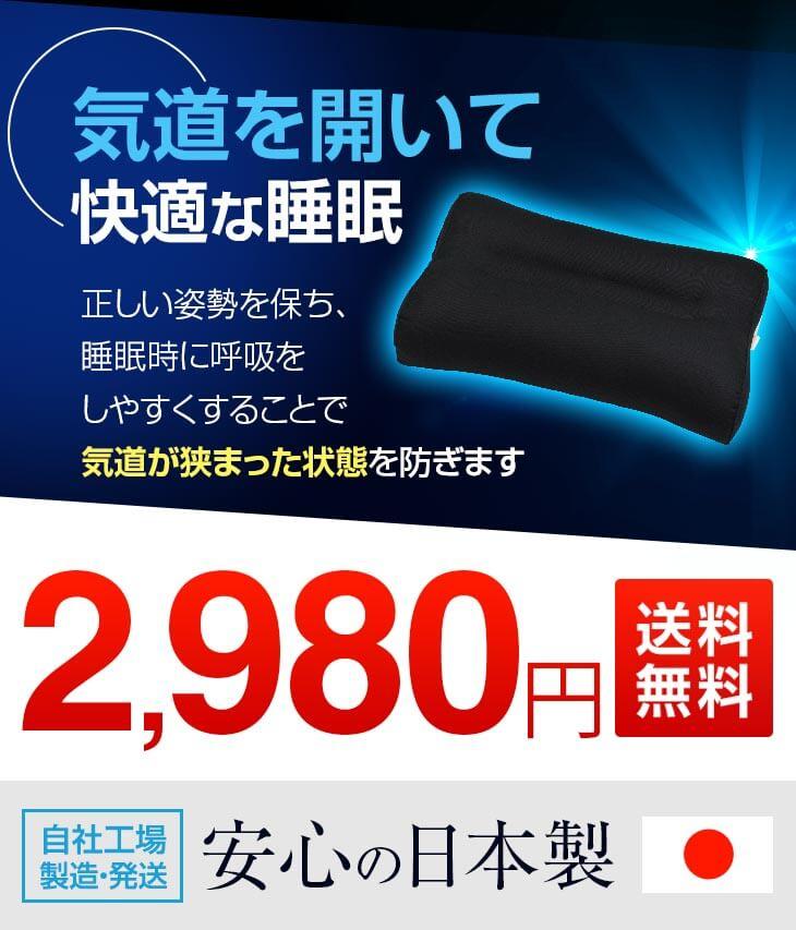 効果はそのまま いびき枕の低価格版 いびきわた枕 男性用 ブラック 黒 2,980円 手洗いOK 43 63�