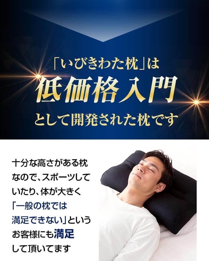 確かな信頼の証 気道を開きやすく、呼吸を妨げない形状のいびき対応 洗濯可能 高さ調節可能 いびき枕は累計販売個数60,000個突破