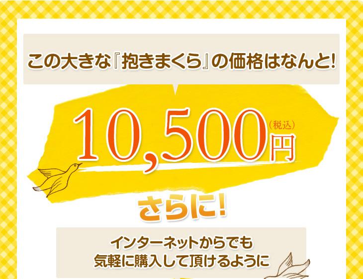 リビングインピースの抱きまくらはこの品質で10500円
