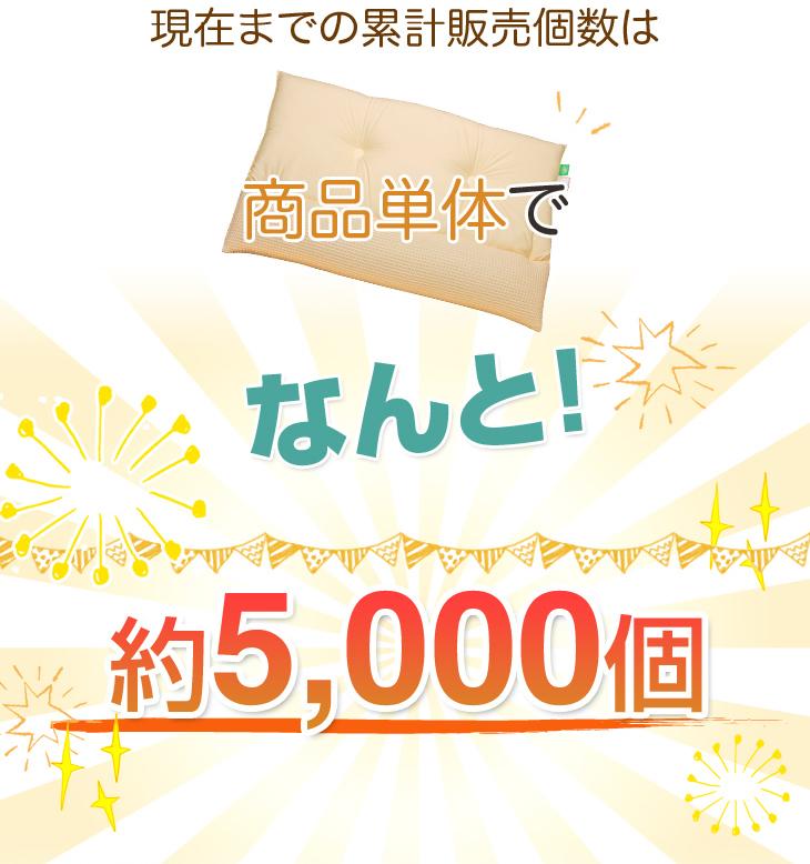 リビングインピースのストレートネック対応ネックフィット枕の累計販売個数は約5000個
