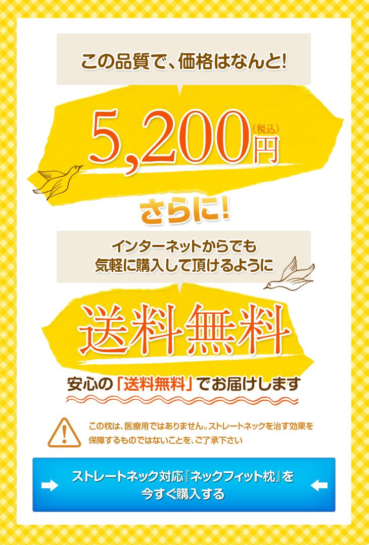 リビングインピースのストレートネック対応ネックフィット枕はこの品質で5000円、送料無料