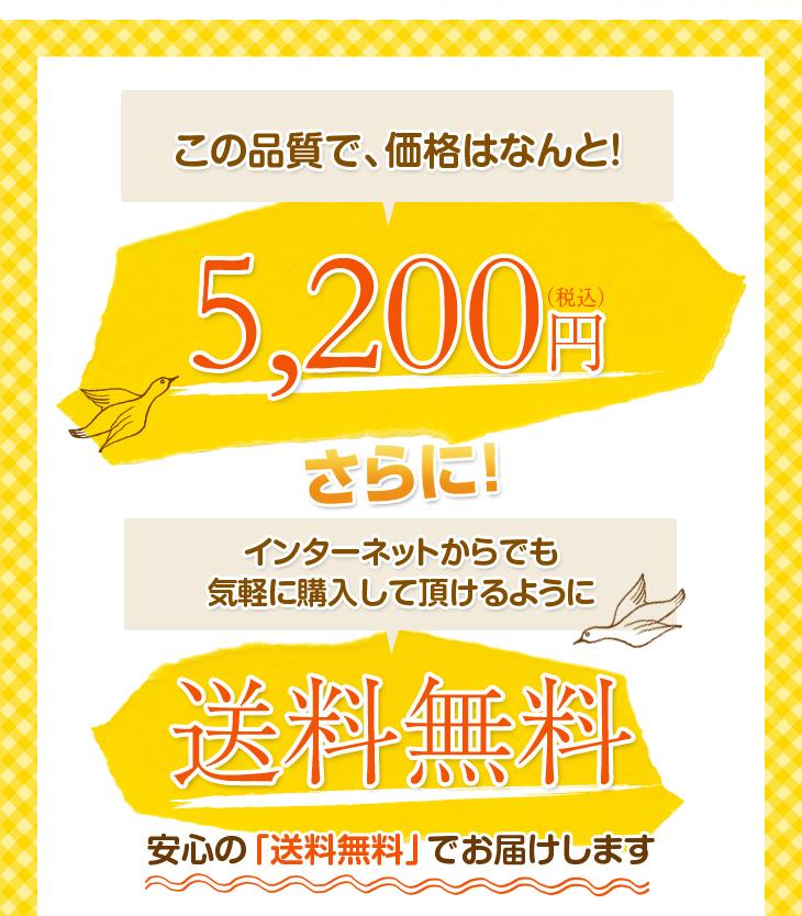 リビングインピースの寝返り対応ねがえり枕はこの品質で5040円、さらに送料無料
