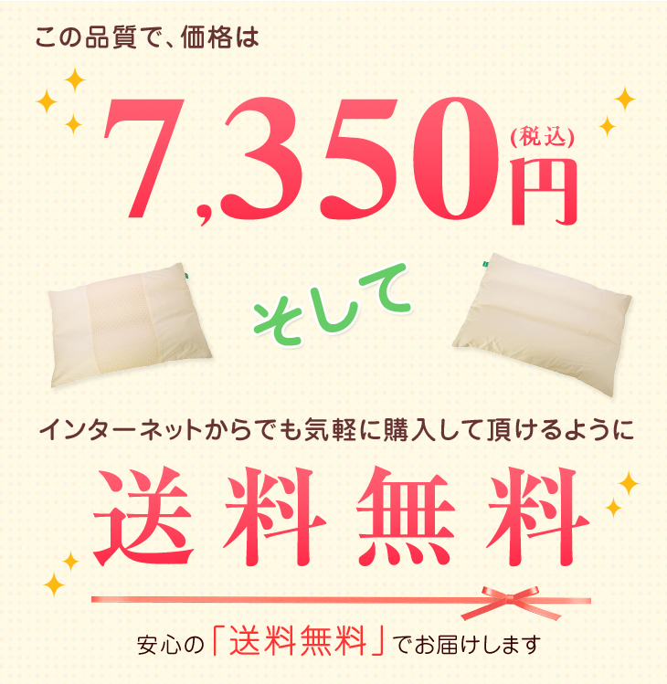 リビングインピースの竹炭枕はこの品質で価格は7350円、さらに送料無料