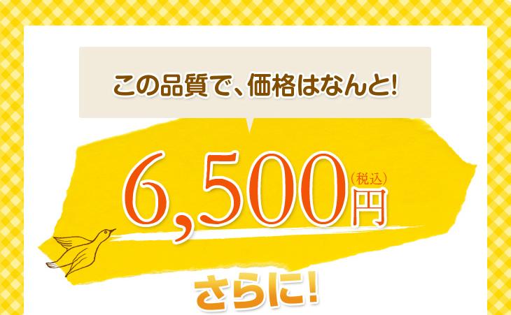 リビングインピースのエアリッチ枕はこの品質で6500円