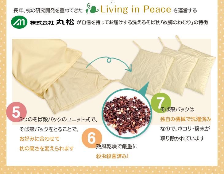 長年枕の研究開発を重ねてきたリビングインピースを運営する株式会社丸松が自信を持ってお届けする洗えるそば枕故郷の眠りの特徴