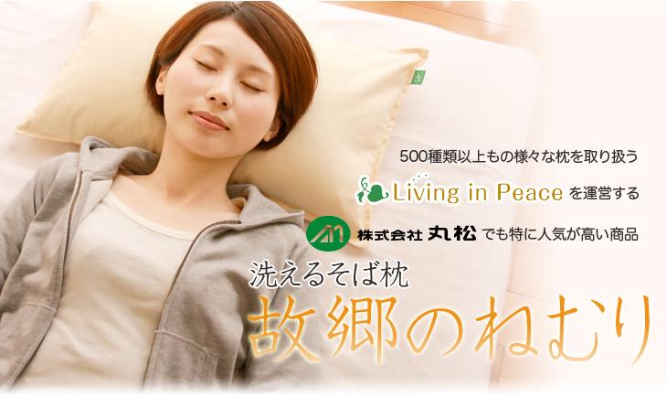 500種類以上の枕を取り扱うリビングインピースを畝異する丸松でも特に人気が高い洗えるそば枕故郷のねむり