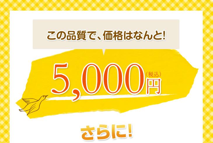 リビングインピースの洗えるそば枕故郷のねむりはこの品質で5000円