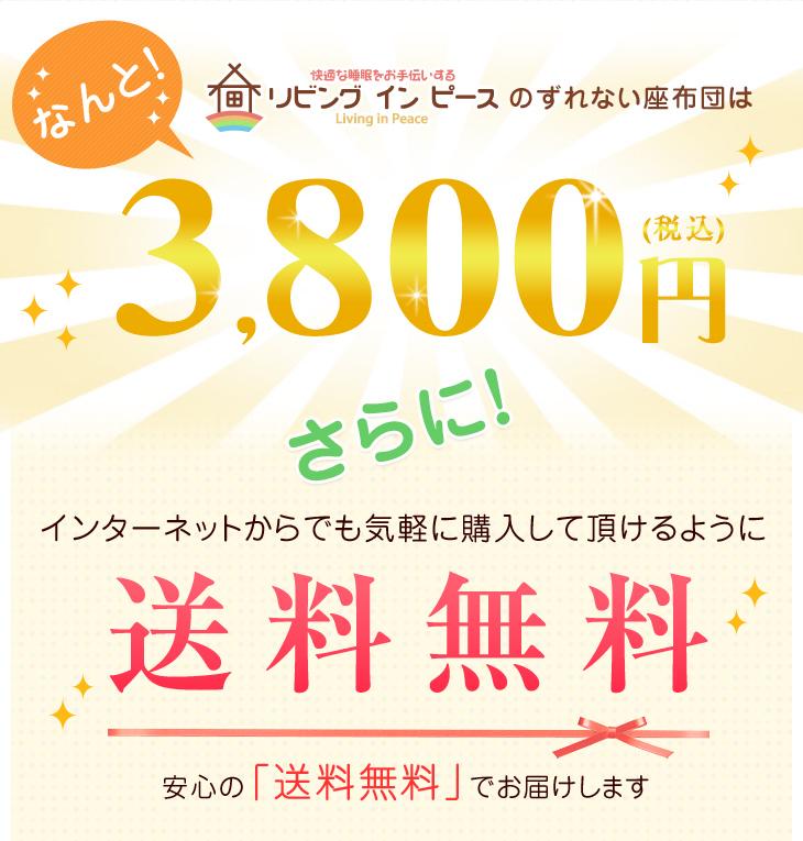 リビングインピースのすべらない座布団はなんと3,800円!さらに送料無料!
